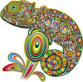 StudioGraficzne-kameleon